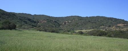 orange county: Green meadow and hills, Orange County, California Stock Photo