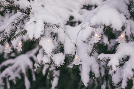 Shining Christmas garland on the snowy fir tree. Stock Photo