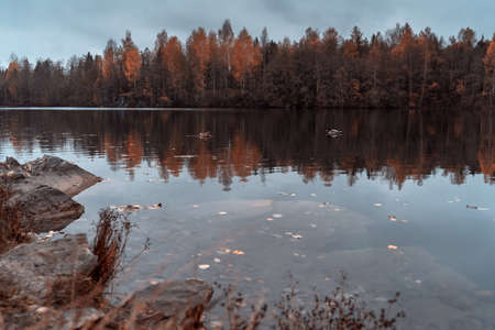 Beautiful autumn misty lake and forest wild landscape. Autumn forest and lake background. Great design for any purposes.