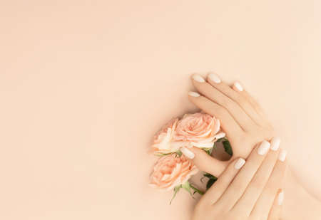 Female hands holding tea roses on pastel background for decoration design. Vintage pink gift card. Love and romance concept. Beauty concept. Flat lay style. Copy space.
