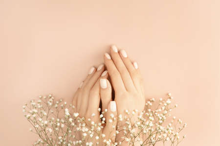 Female hands adorned with small white flowers on pastel background for decoration design. Vintage pink gift card. Love and romance concept. Beauty concept. Flat lay style. Copy space. Reklamní fotografie