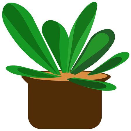 home interior plant vector illustrations