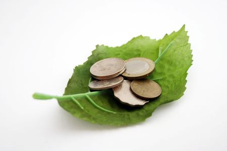 Leaf with coin money photo