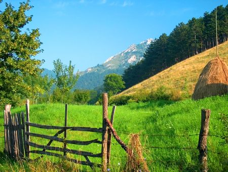 haycock: Summer time mountain landscape with green grass, haycock, forest, blue sky Stock Photo