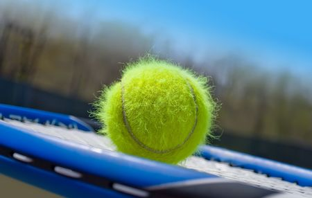 Haired tennis ball on a racquet