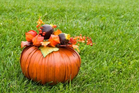 Orange decorative pumpkin with leaves, flowers and berries on green grasss photo