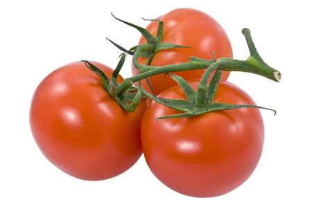 Bunch of red tomatoes on white background