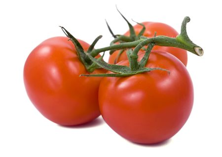 Bunch of red tomatoes with green twig Banque d'images