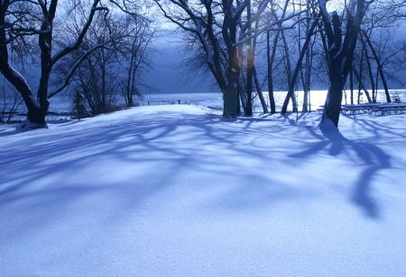 Winter morning in the park - lakeshore landscape with lens flare Banque d'images