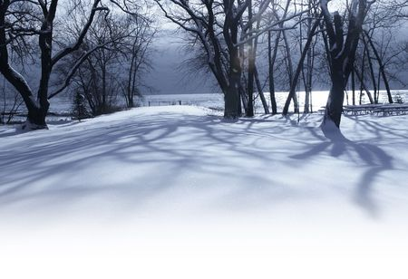 White winter morning in the park - lakeshore landscape with lens flare photo
