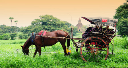 horse and carriage: The temples and the horse carriage in Bagan, Myanmar.