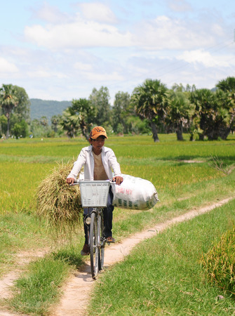 illiterate: MEKONG DELTA, VIETNAM - JULY 25, 2014. Child labor at Asia countryside, a boy transports straw bag by bike from rice field, social problem at Asia poor rural, Vietnam.