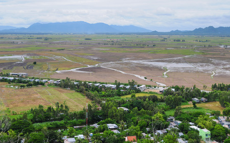 Aerial view of paddy rice fields in Mekong Delta Zone, Southern Vietnam. photo