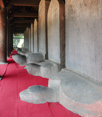 doctoral: Turtle stone steles, bearing the names of Doctoral laureates of the Temple of Literature between 1142 and 1778 in Vietnam at Van Mieu - Quoc Tu Giam (Temple of Literature) in Hanoi.