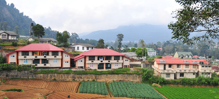 tourism  city: Vegetable fields and house in Dalat, Vietnam. Da Lat is one of the best tourism city in Vietnam.