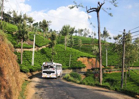HIGHLANDS, SRI LANKA - FEB 23, 2015. A bus on beautiful mountain road through tea estates in Highlands, Sri Lanka.
