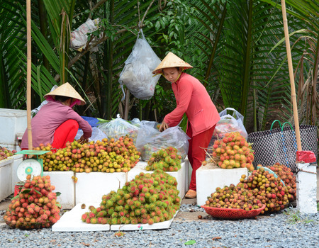 sidewalk sale: Ben Tre, Vietnam - Jun 25, 2015. Vietnamese women with the conical hat selling many tropical fruits at the market in Mekong Delta, Vietnam. Editorial