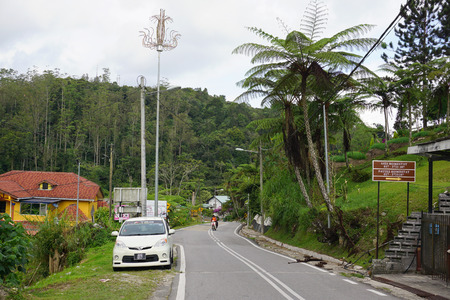 cameron highlands: Cameron, Malaysia - June 22, 2015. Mountain road in Cameron Highlands, Malaysia. The Cameron Highlands is one of Malaysia's most extensive hill stations.