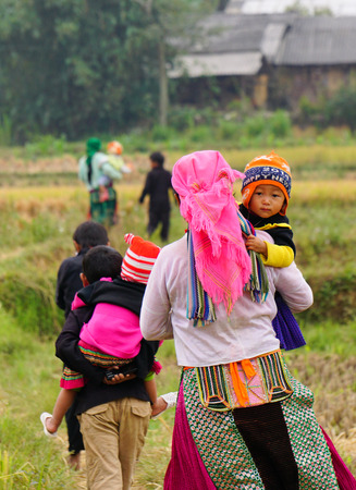 ha giang: Ha Giang, Vietnam - Jun 22, 2015. Hmong people working on the rice terraces field in Ha Giang, Northwest Vietnam.