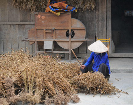 ha giang: Unidentified ethnic minority people working at home in Ha giang, Vietnam. Ha giang is a northernmost province in Vietnam.