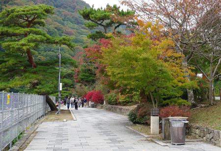 japanese fall foliage: Nara, Japan - Nov 3, 2014. People enjoying at Japanese garden in autumn, Nara, Japan. In autumn, Nara is a popular destination for viewing fall foliage.