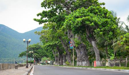 Con Dao road - de beroemde weg die leidt langs de kustlijn bergen in Con Dao eiland, Vietnam. Prachtige natuur en transport achtergrond.