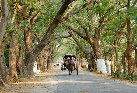 horse cart: Mandalay, Myanmar - Feb 22, 2016. Horse cart carrying tourists on rural road with many trees in Mandalay, Myanmar.