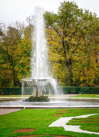 Fountain with autumn garden in Petergof, Saint Petersburg, Russia.