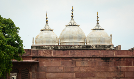 mughal empire: Details of Agra Fort, World Heritage site in Agra, India. Editorial