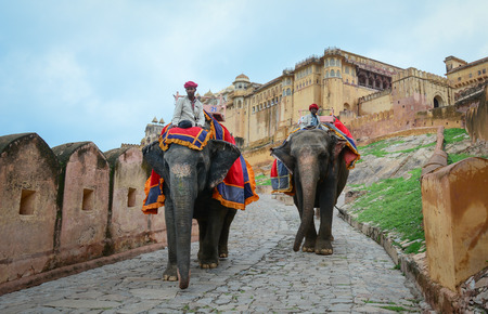 mahout: JAIPUR, INDIA - JUL 28, 2015. Indian mahouts and their elephants near the Amber Fort, magnificent fortified palace. This Maharajah residence became in 2013 Unesco world heritage site. Editorial