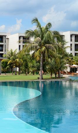 inground: Residential inground swimming pool in backyard