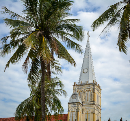 Top of Catholic Church with palm trees in Mekong Delta, Vietnam. The Mekong is a trans-boundary river in Southeast Asia. It is the worlds 12th-longest river.