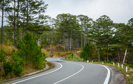 highlands region: Mountain road with pine tree forest in Dalat, Vietnam. Dalat is a city located on Lang Biang highlands – part of the Central Highlands region of Vietnam. Stock Photo