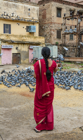 trash the dress: Jaipur, India - Jul 27, 2015. An Indian woman feeding pigeons on street in Jaipur, India. Jaipur, known as the Pink city, is a major tourist destination in India.