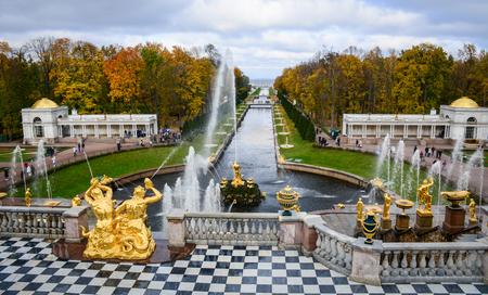 Saint-Pétersbourg, Russie - Oct 9, 2016. Samson Fontaine et de la mer Manche à Peterhof, Saint-Pétersbourg, en Russie. Le Musée Peterhof est l'un des musées les plus populaires en Russie.