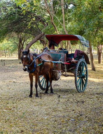 horse cart: Bagan, Myanmar - Feb 18, 2016. Horse cart waiting for tourists on rural road in Bagan, Myanmar. Bagan is an ancient city in central Myanmar (formerly Burma), southwest of Mandalay. Editorial