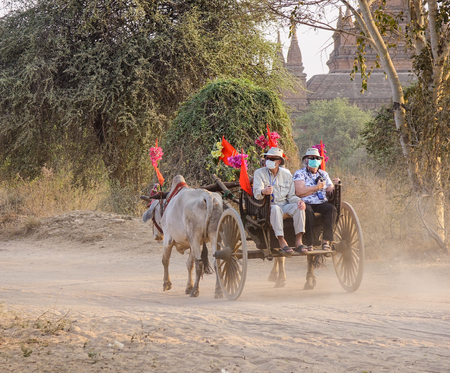 Bagan, Myanmar - Feb 19, 2016. An ox cart carrying tourists on dusty road in Bagan, Myanmar. Bagan in central Burma is one of the worlds greatest archeological sites.