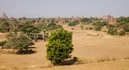sight seeing: View of Ancient Buddhist temples with dried fields at sunny day in Bagan, Myanmar. Bagan is an ancient city in central Myanmar (formerly Burma), southwest of Mandalay.