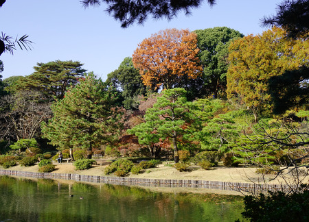 Tokyo, Japan - Dec 6, 2016. People at Rikugien gardens in Tokyo, Japan. Rikugien is often considered Tokyos most beautiful Japanese landscape garden. Editorial