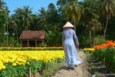 화 12 월, 베트남에서에서 화창한 날 꽃 농장에서 산책하는 여자. Sadec District는 메콩 강의 제품을 전문으로합니다.