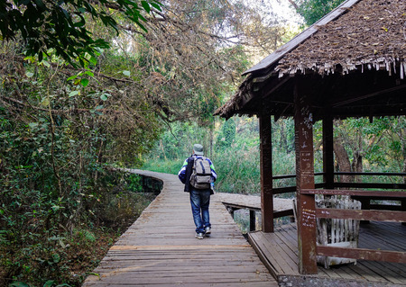 Pyin Oo Lwin, Myanmar - Feb 12, 2017. A man walking at the Botanic Garden in Pyin Oo Lwin, Myanmar. The park has been used to promote extensive ecotourism in Myanmar. Editorial