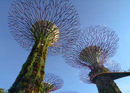famous industries: Singapore - Mar 12, 2016. Supertree Grove at the Gardens by the Bay in Singapore. Gardens by the Bay is a top attraction in Singapore which features the worlds largest glass greenhouse.
