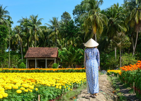 A woman walking on flower plantation in Mekong Delta, Vietnam. The Mekong Delta is by far Vietnam most productive region in agriculture. Stock Photo