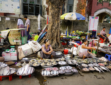million fish: Yangon, Myanmar - Feb 13, 2017. People selling fresh fish at street market in Yangon, Myanmar. Yangon is the country largest city with a population above 7 million.