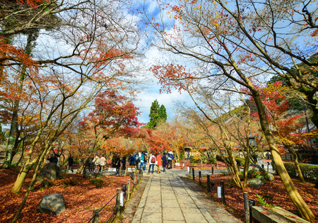 frequented: Kyoto, Japan - Nov 28, 2016. People visit the garden of Eikando temple in Kyoto, Japan. Eikando is famous for its fall foliage and highly frequented by locals and tourists alike. Editorial