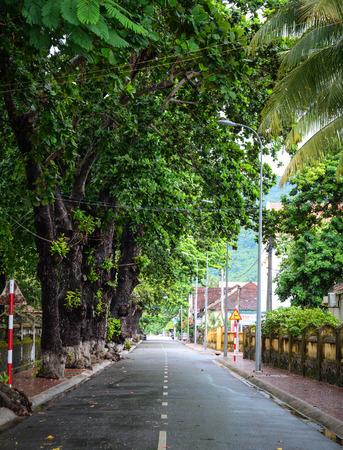 con dao: Con Dao, Vietnam - Sep 9, 2015. Rural road in Con Dao island, Vietnam. The Con Dao Islands are an archipelago of Ba Ria Province, in the Southeast region of Vietnam. Editorial
