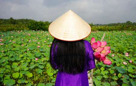 Vietnamese woman wearing traditional dress (ao dai) with conical hat and lotus flowers. Lotus pond background. Stock Photo