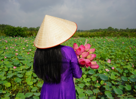 obesum: Vietnamese woman wearing traditional dress (ao dai) with conical hat and lotus flowers. Lotus pond background. Stock Photo
