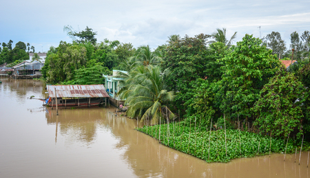 An Giang, Vietnam - Oct 3, 2015. River scenery with many trees in An Giang, Vietnam. An Giang occupies a position in the upper reaches of the Mekong Delta.