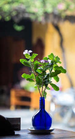 Small flowers with green leaves in the blue glass pot